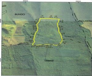 Padure de vanzare in Bacau, vanzare teren cu padure, padure Buhoci, vanzare padure